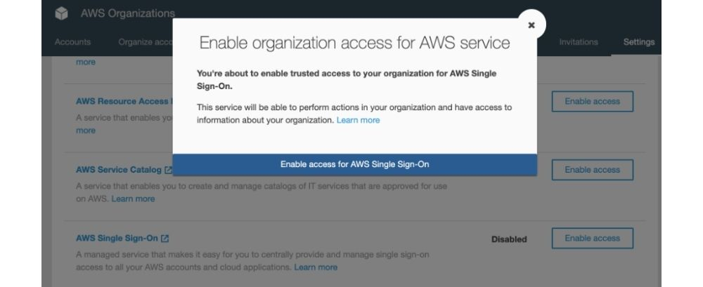 Enable Organization Access for AWS