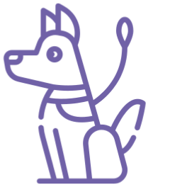 Bei Sequafy sind Hunde willkommen